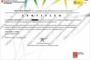 Диплом по каталанскому языку уровня
