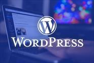 Wordress - разработка, доработки, правки
