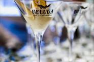 Beluga Noble Summer в музее «Гараж»