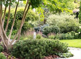 Профессиональная фотосъёмка сада